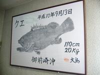 クエ 魚拓
